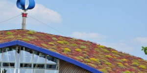 Klimagerechtes Dach des Besucherzentrums