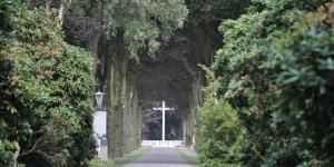 Soldatenfriedhof Ysselsteyn