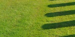 Jeder Schatten ein Grabstein