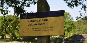 Nationalpark Veluwezoom