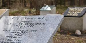 Gedenkstein für Jaguar