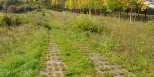 Alter Kolonnenweg