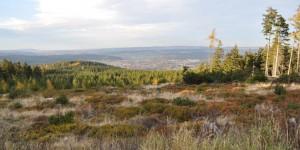 Blick vom Spießberg