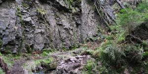 Naturdenkmal Röllchen
