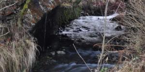 Brücke am Unterbecken in Goldisthal
