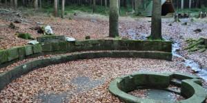 Quelle der Schwarza bei Limbach