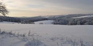 Winterlicher Thüringer Wald