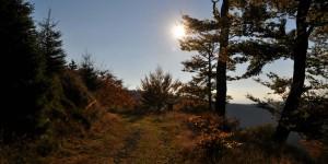 Wanderweg am Großen Inselberg