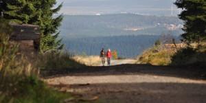 Wanderweg am Gothablick