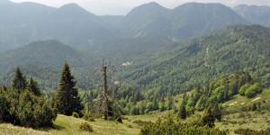 Blick vom Veitsberg