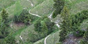 Typischer Steig durch die Alpen