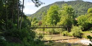 Brücke über den Kiefernbach