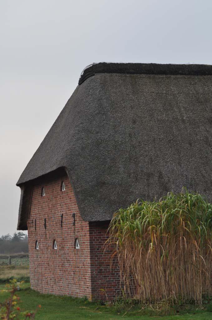 Typisches Reetdachhaus