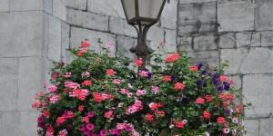 Lampe mit Blumen