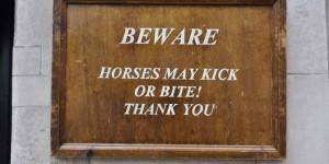 Pferde beißen