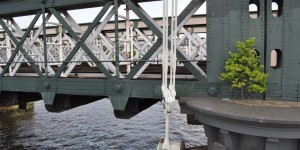 Einsames Bäumchen auf einer Brücke