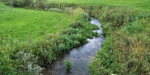Der Fluss Laber