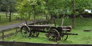 Am Forsthaus Kühkopf
