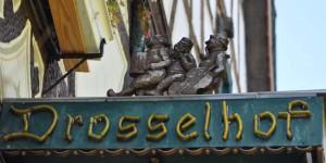 Drosselhof
