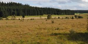 Landschaft an der Rur