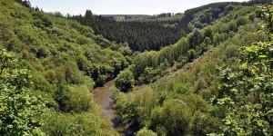 Landschaft im Tal der Ourthe