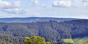 Ausblick über den Harz