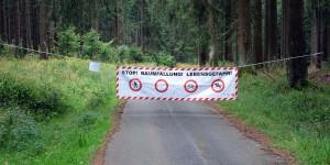 Gesperrter Waldweg