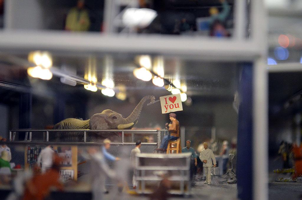 Abfertigung von Elefanten