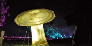 Großer Pilz