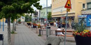 Mariehamnsgumse