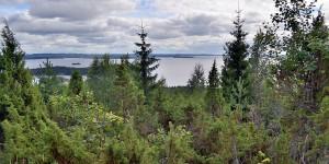 Aussicht in Finnland