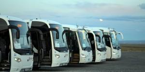 Busse am Nordkap