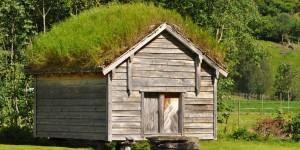 Haus mit Grasdach