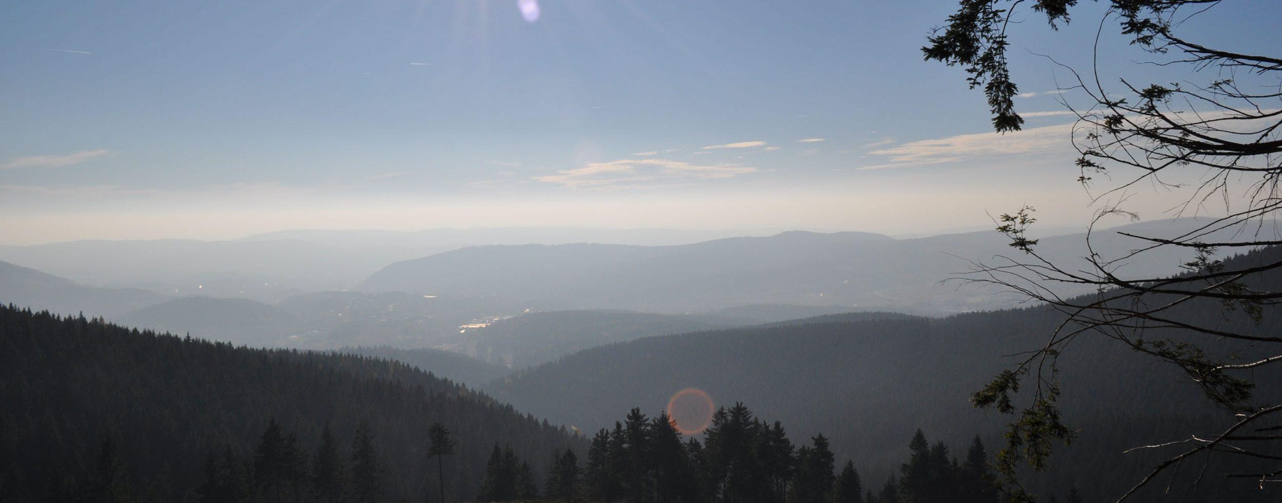 Aussicht am Großen Beerberg