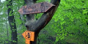 Wanderweg zum Forsthaus Hohenroth