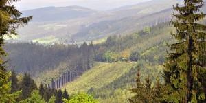 Ausblick über das Sauerland