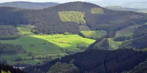 Landschaft bei Oberhundem