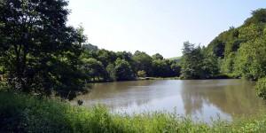 Teich bei Hanxleden