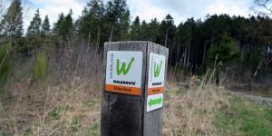 Logo der Waldroute im Sauerland