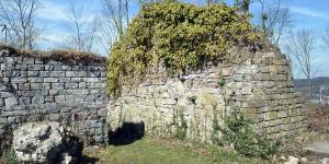 Ruine der Rüdenburg in Arnsberg