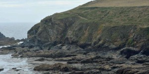Lizard Point