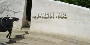 Denkmal für die toten Tiere im Krieg