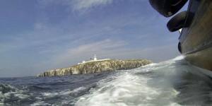 Fahrt mit dem Schiff zu Farne Islands