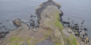 Blick auf Giants Causeway