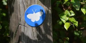 Schmetterling als Wanderwegzeichen