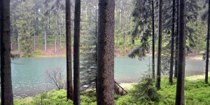 Mittlerer Grumbacher Teich