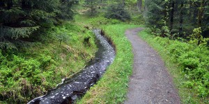 Wandern entlang dem Dammgraben