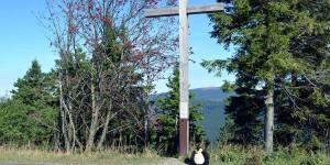 Pingu am Gipfelkreuz