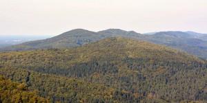Landschaft am Hermannsdenkmal