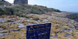 Farne Island gehört zum National Trust